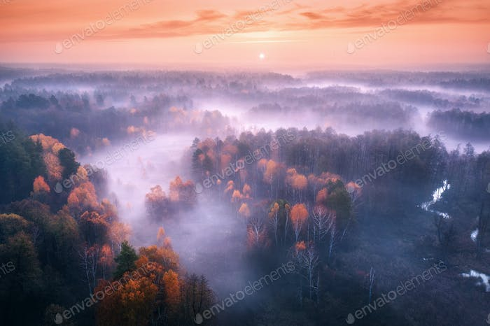 Aerial view of foggy forest at colorful sunrise in autumn