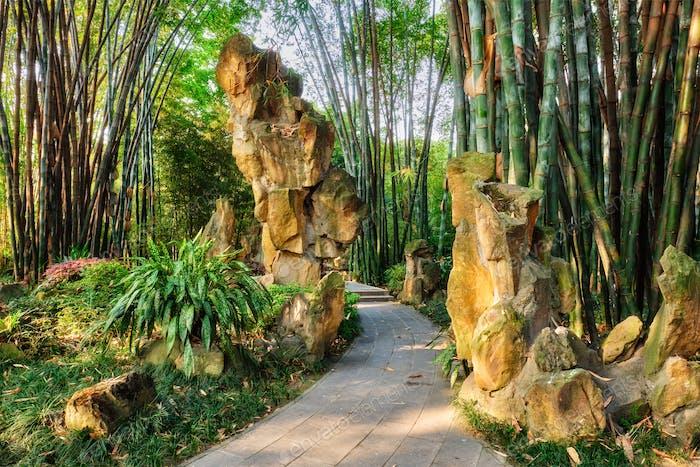 Park in Chengdu, China