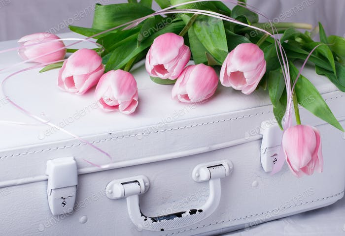 Pink tulips, white vintage suitcases.Concept Holiday Valentine Day.Greeting Card,Gift.