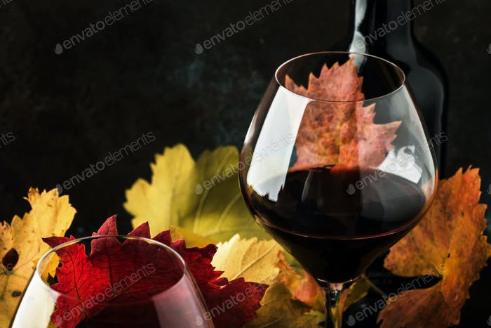 Trockener Rotwein im großen Weinglas, Herbststillleben mit Blättern