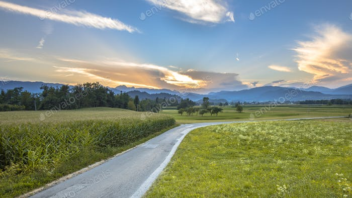 Road through Slovenian countryside landscape