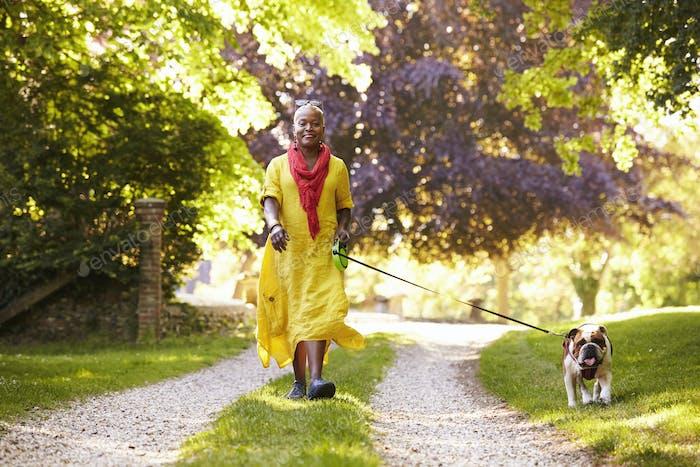 Portrait Of Senior Woman Walking Pet Bulldog In Countryside