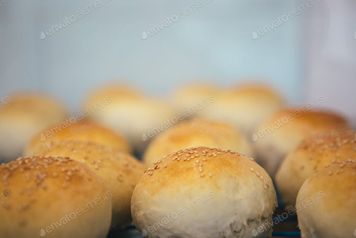 Sesame buns on oven-tray