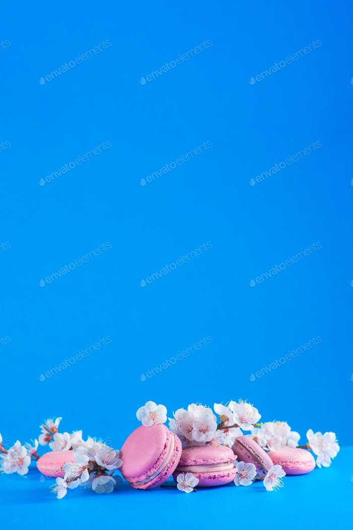 French macaroon cookies with cherry blossom flowers on a sky blue background with copy space. Color