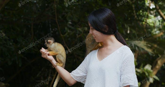 Woman feed Squirrel Monkeys in ishigaki park