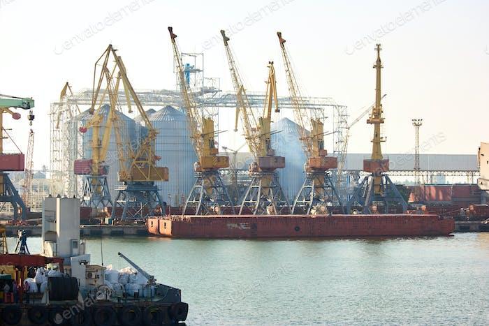 Huge yellow metal cranes in the port.