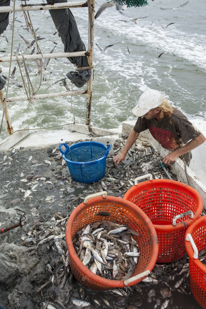 commercial fisherman at work
