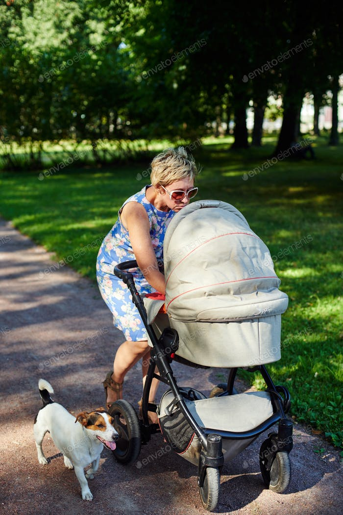 Woman walking with dog and baby carriage