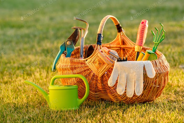 Gardening tools in basket and watering can on grass