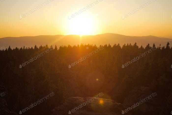 forests, mountains and sunset lensflare