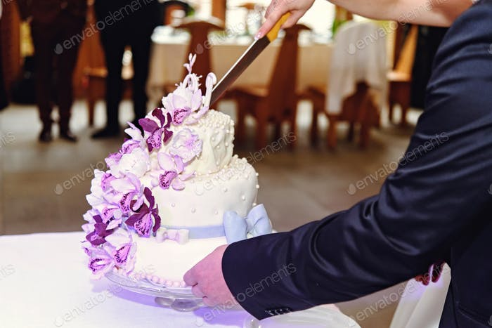 beautiful newlyweds cutting stylish cake with orchids, celebrating wedding