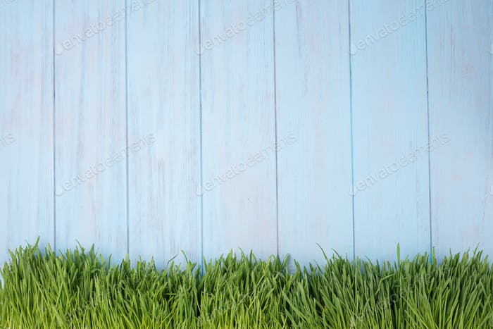 Green grass over wood background.