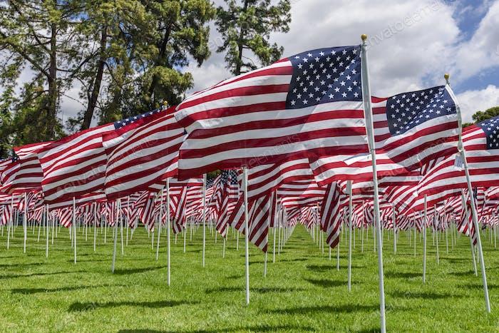 Amerikanische Flaggen auf einem grünen Gras