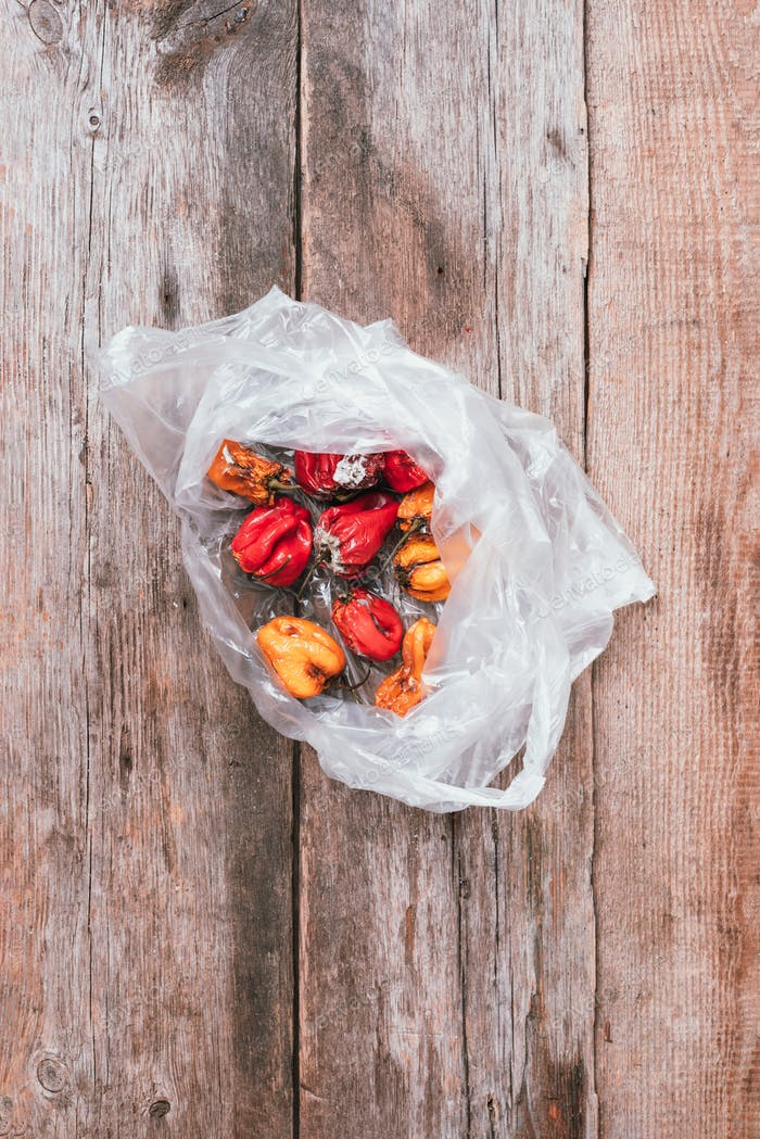 Moldy and wrinkled rotten peppers in plastic bag on wooden background. Concept of unhealthy