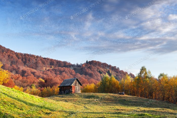 Picturesque autumn meadow with wooden house