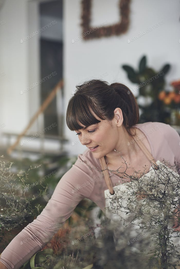 Young female florist arranging plants in her flower shop