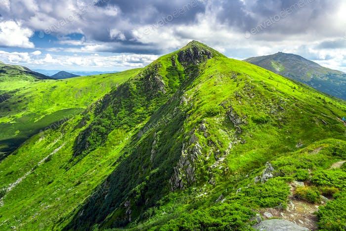 Carpatian summer landscape