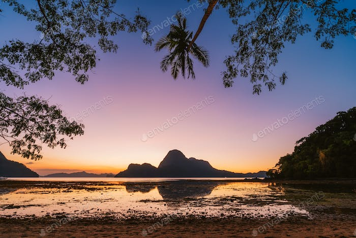 El Nido bay. Palawan, Philippines. Silhouette of palm trees in sunset light. Exotic tropical island
