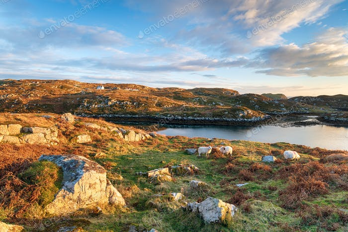 The Isle of Scalpay in Scotland