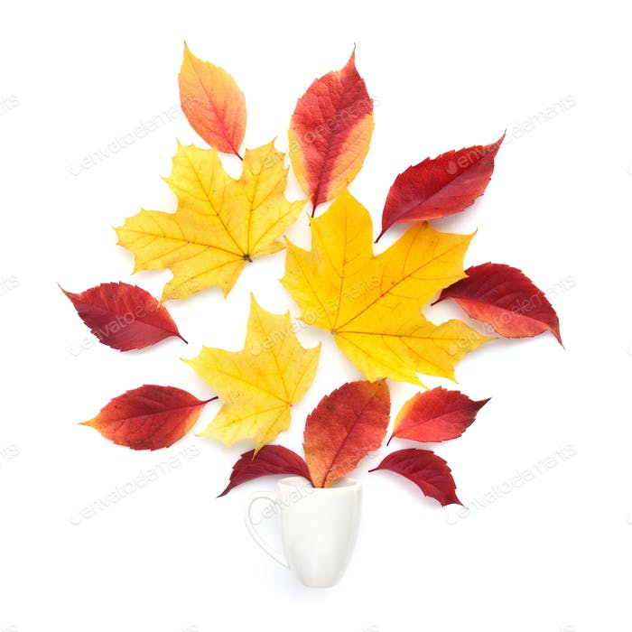 Creative arrangement autumn leaves and coffee cup on a white bac
