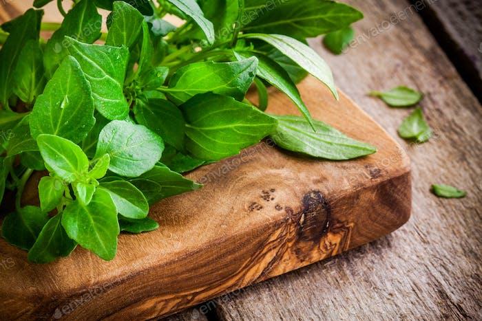 bunch of fresh organic basil in olive cutting board closeup