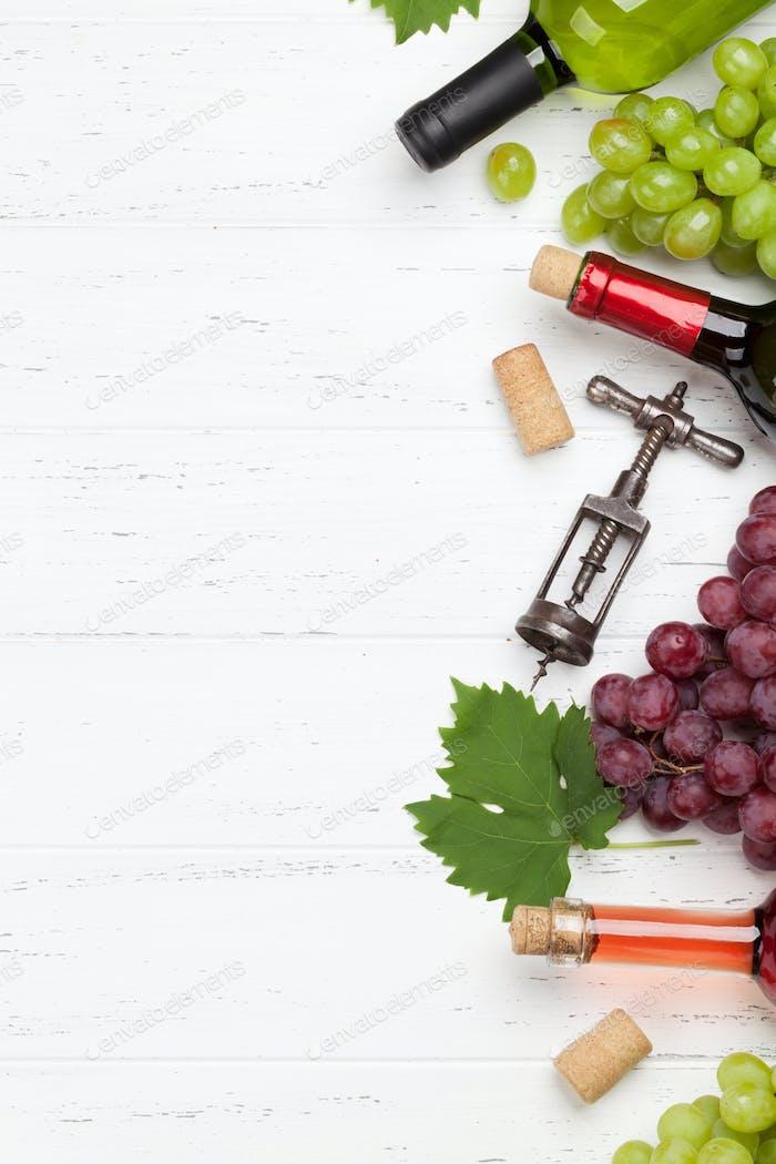 Verschiedene Weine und Trauben