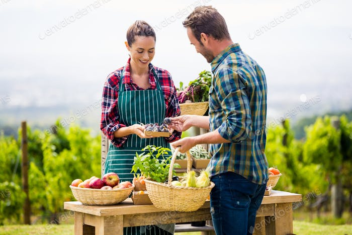 Woman selling organic vegetables to man
