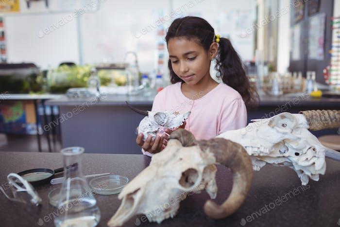 Schulmädchen mit Tier Schädel