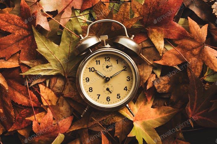 Время осеннего сезона