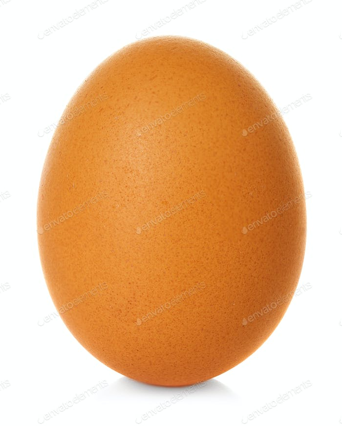 Egg chicken brown  isolated on white background