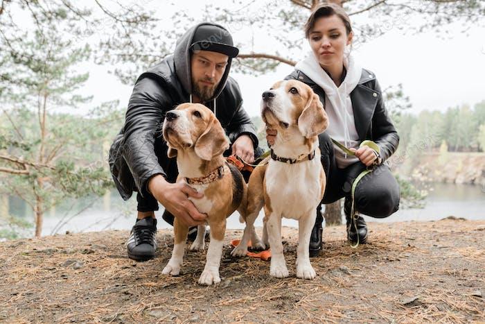 Junge lässig paar sitzen auf Kniebeugen kuscheln zwei reinrassige Beagle Welpen