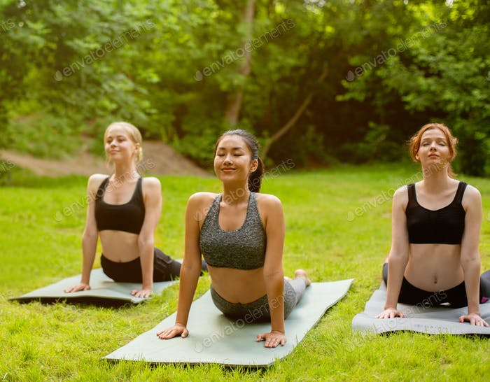 Peaceful Asian woman with her friends practicing outdoor group yoga at park