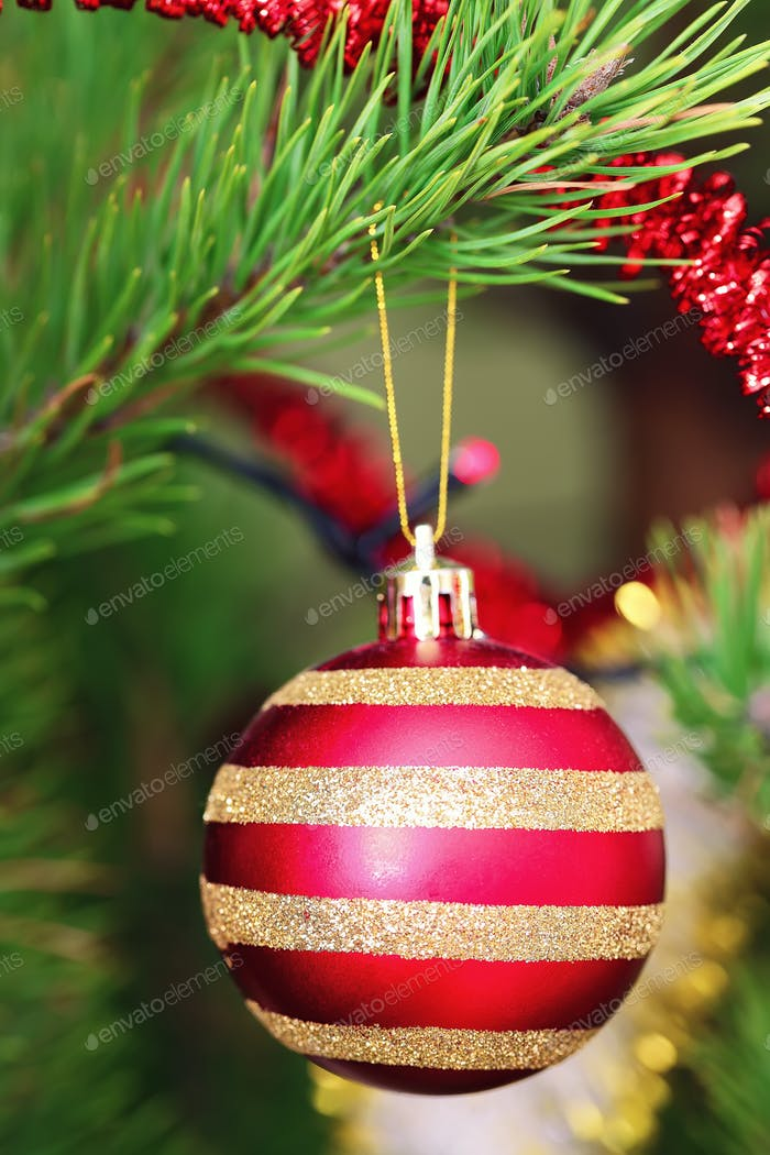 Red Christmas ball hanging on Christmas tree.