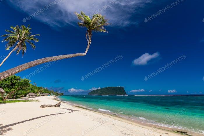 Tropical Lalomanu beach on Samoa Island with palm trees