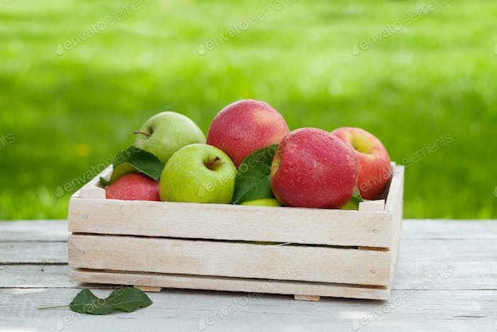 Fresh garden green and red apples in box