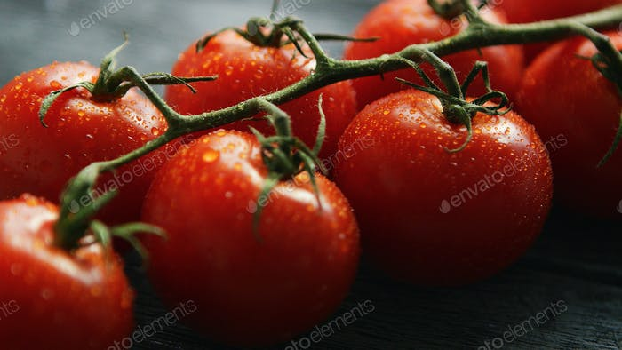 Ripe cherry tomatoes with drops on branch