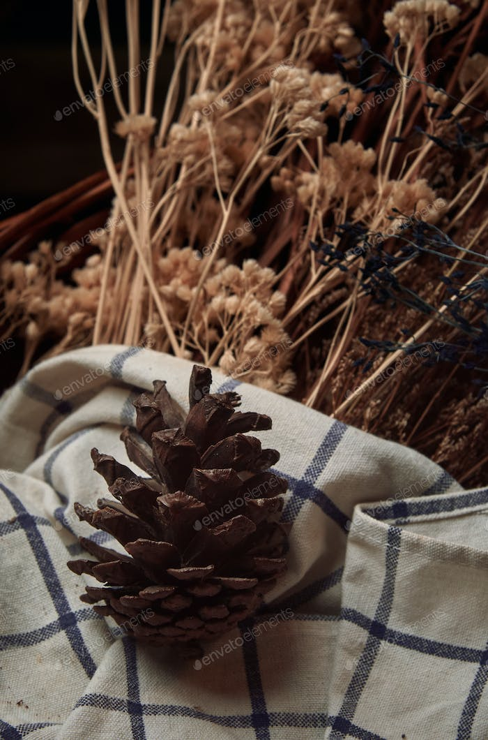 A conifer cone with dried flower
