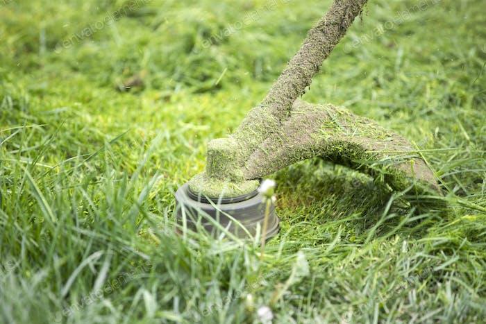 A lawn mower is cutting green grass