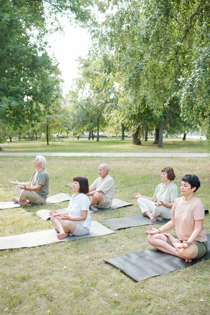 Spiritual people meditating in park
