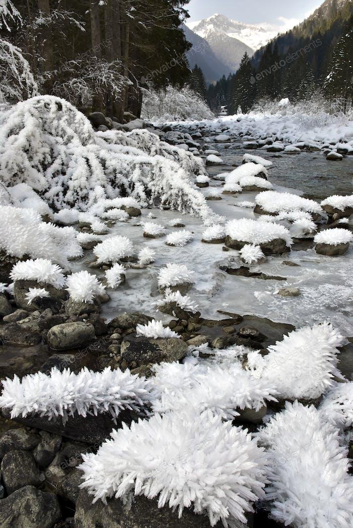 Alpine Valley in Winter