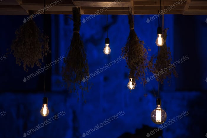 Hanging glowing led bulbs in the dark