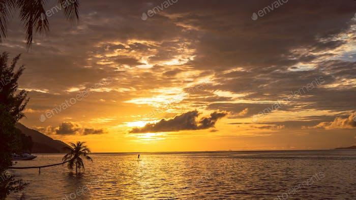 Stand up paddler SUP on Sunset, Kri Island. Raja Ampat, Indonesia, West Papua