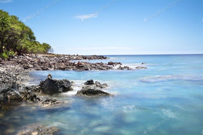Kona Hawaii Reef