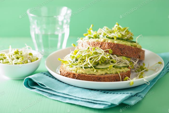 healthy avocado toast with cucumber radish sprouts