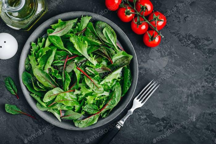 Frischer grüner Bio-Mischsalat mit Tomaten, Zutaten für Salat.