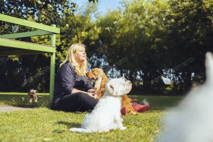 Woman with dogs sitting on grass