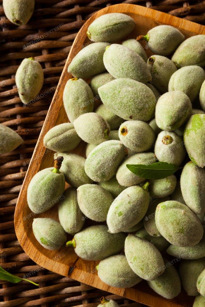 Organic Fresh Green Almonds