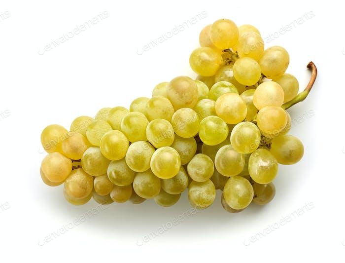ripe green grape