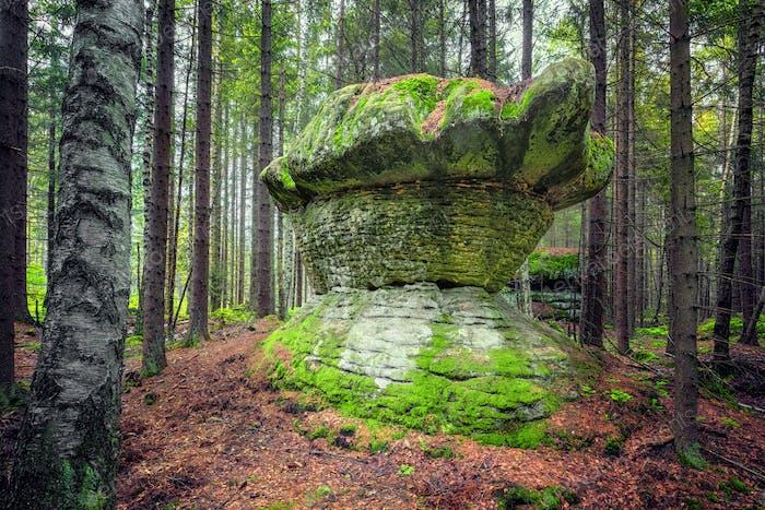 Stolowe Mountains National Park, Poland
