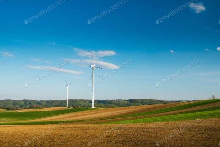 Wind turbines on the field
